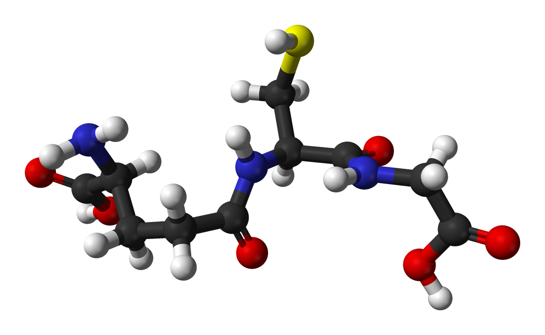 glutathione - wikipedia, Skeleton
