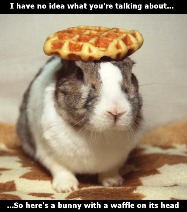 Heres a bunny with waffle.png