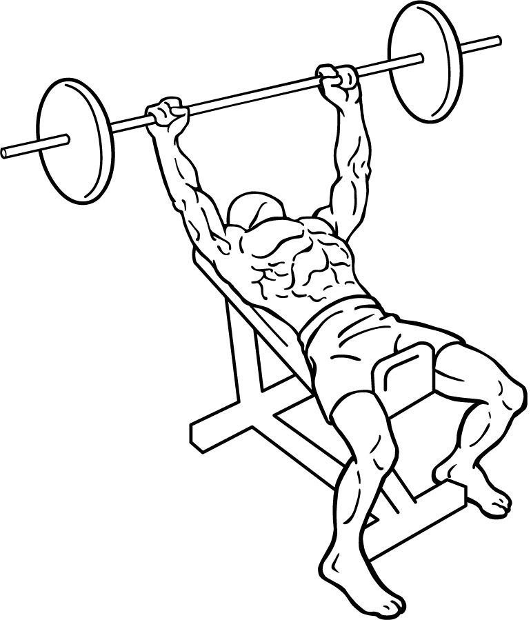 File Incline Bench Press Wikimedia Commons