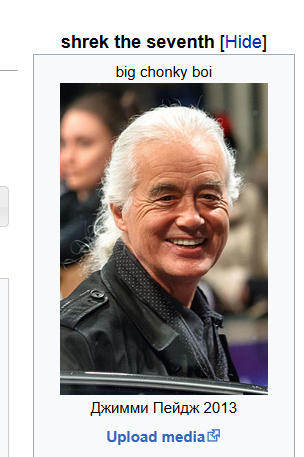 "Jimmy Page, immortalized as ""shrek the seventh"" and ""big chonky boi"""