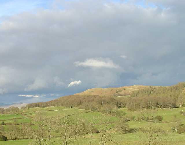 Latterbarrow. View from Hawkshead - geograph.org.uk - 24252