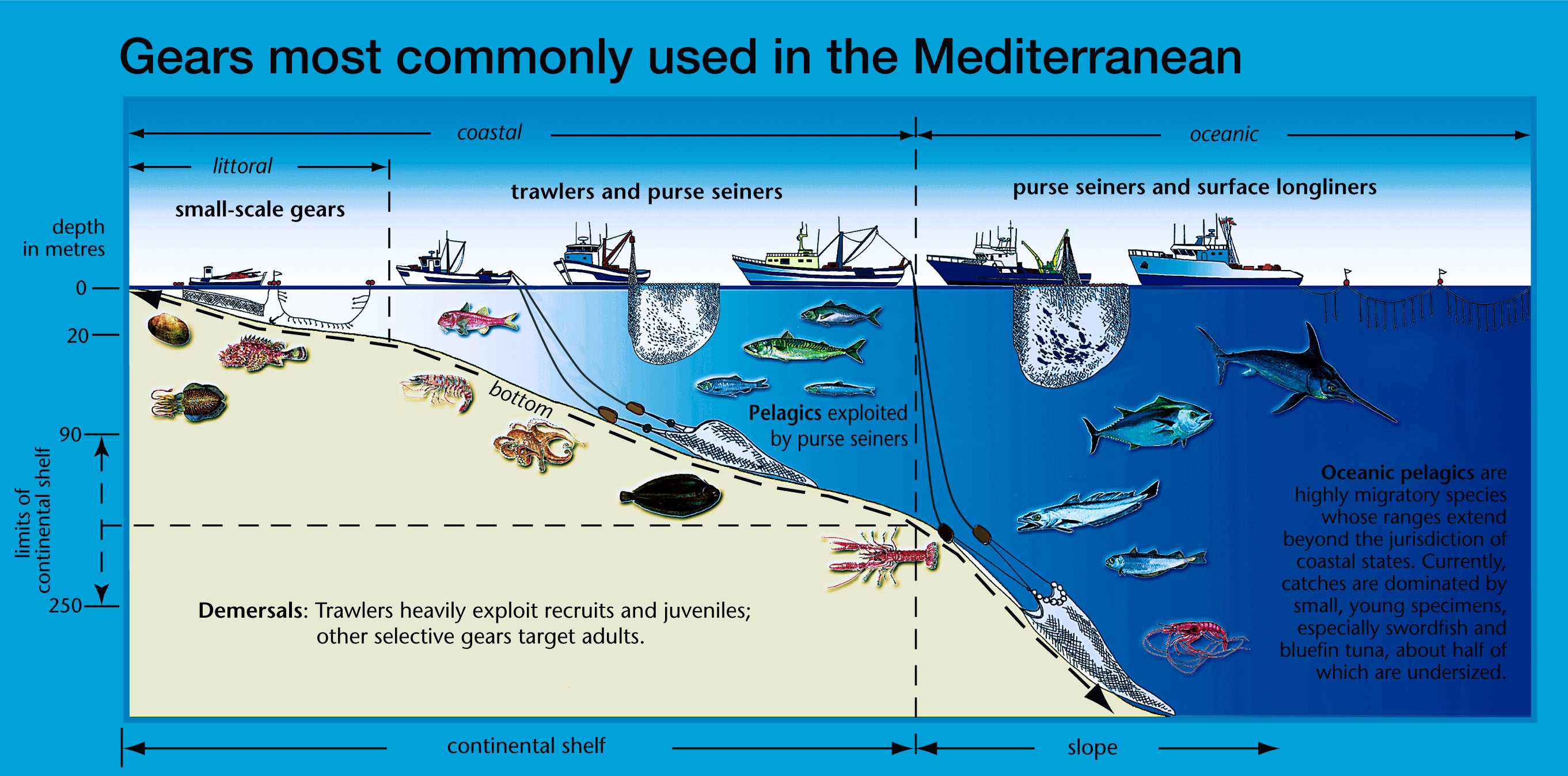 File mediterran fishing wikimedia commons for Ocean fishing gear