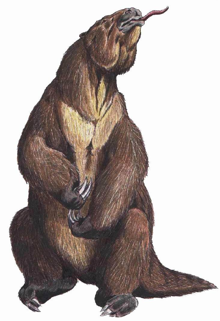 Depiction of Megatherium americanum