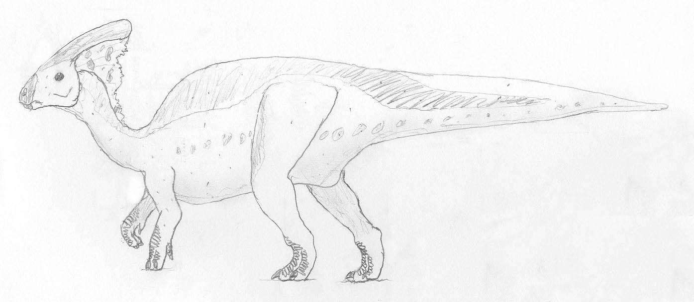 Utah raptor coloring pages for Utahraptor coloring page