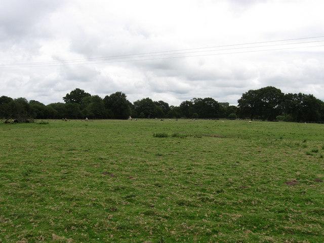 Sheep Hag - geograph.org.uk - 1446061