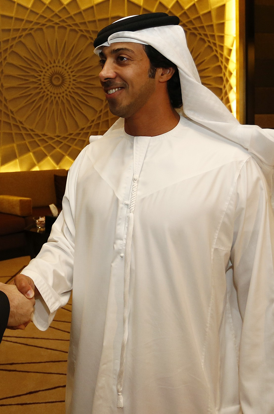 File:Sheikh Mansour shaking the hand of Michael Spindelegger (crop).jpg -  Wikimedia Commons