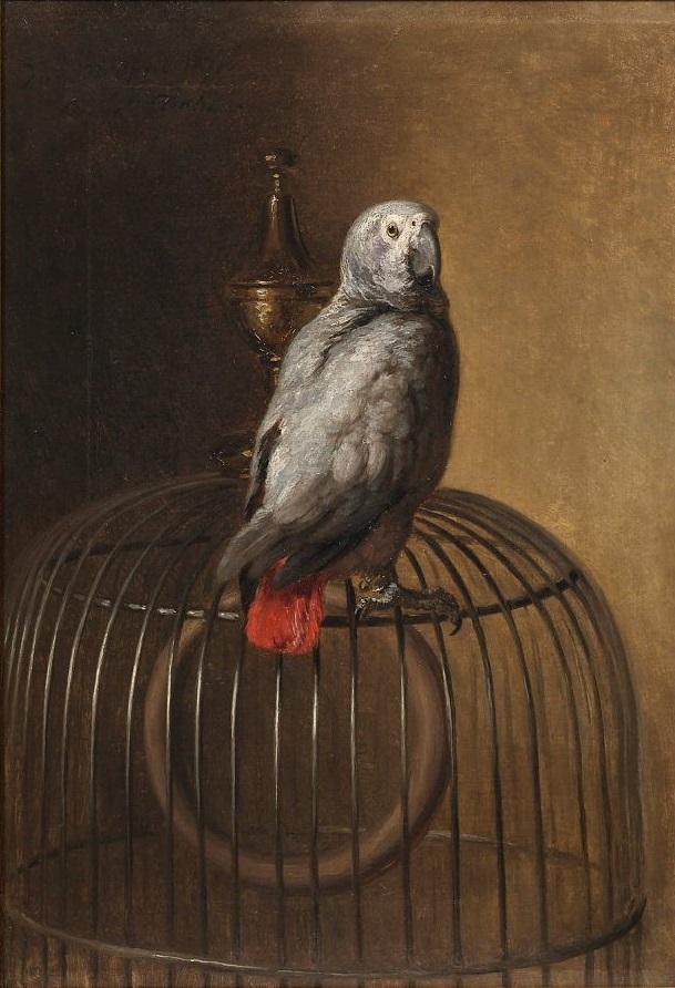 Siegwald Dahl - Papagei (1871).jpg
