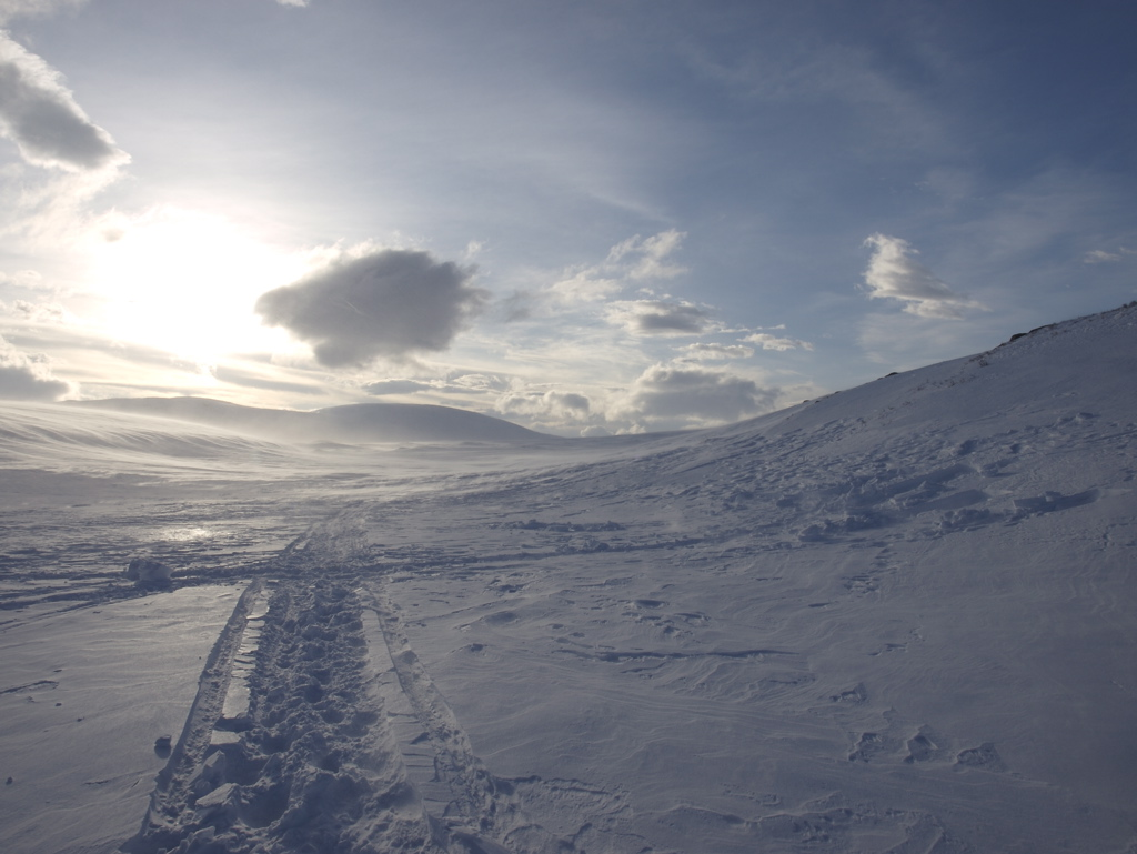 Cross country skiing : Skiing tracks in snow in mountains in Sarek, Sweden.
