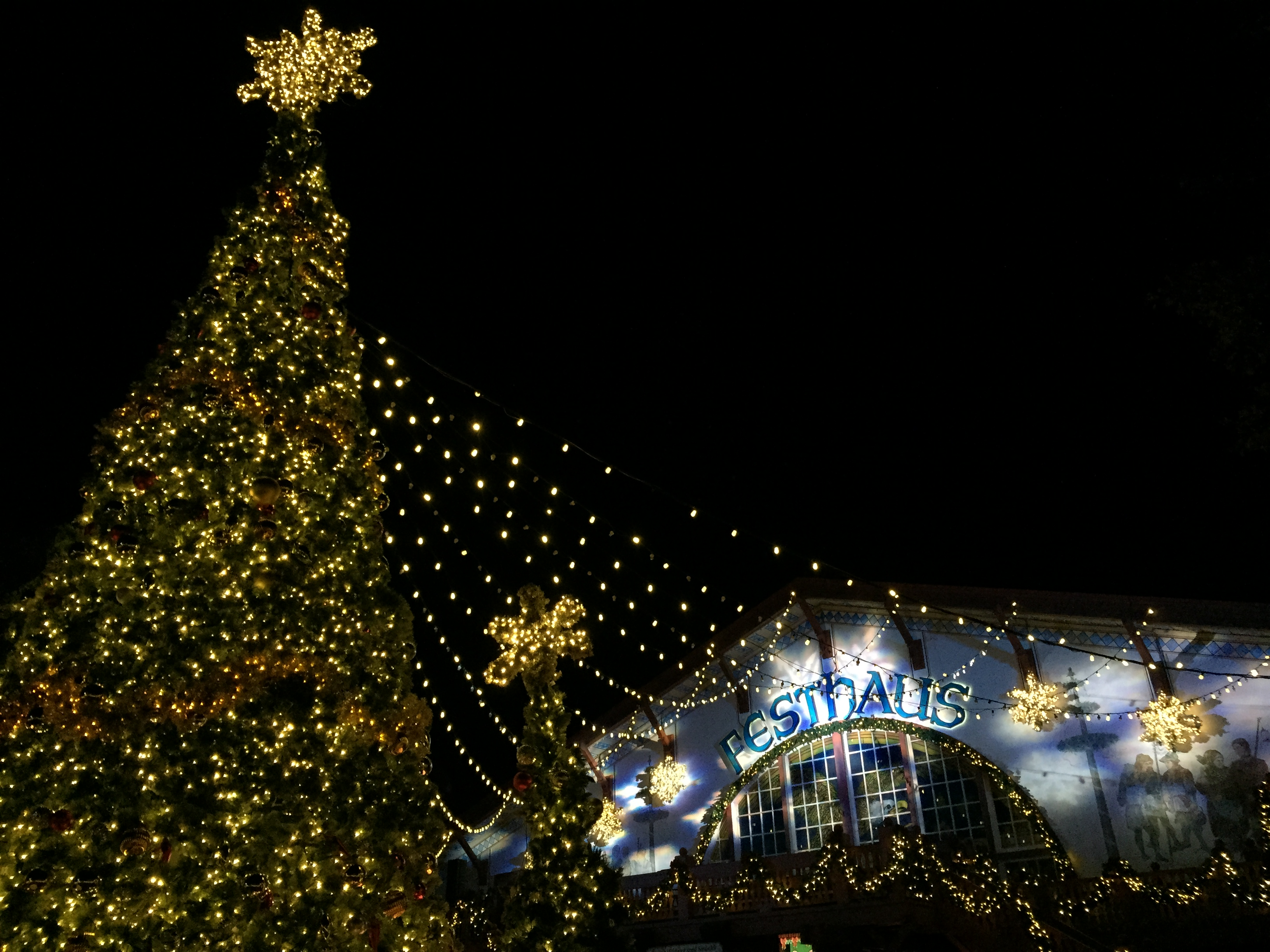 File:50-Foot Tall Christmas Tree With Das Festhaus In The