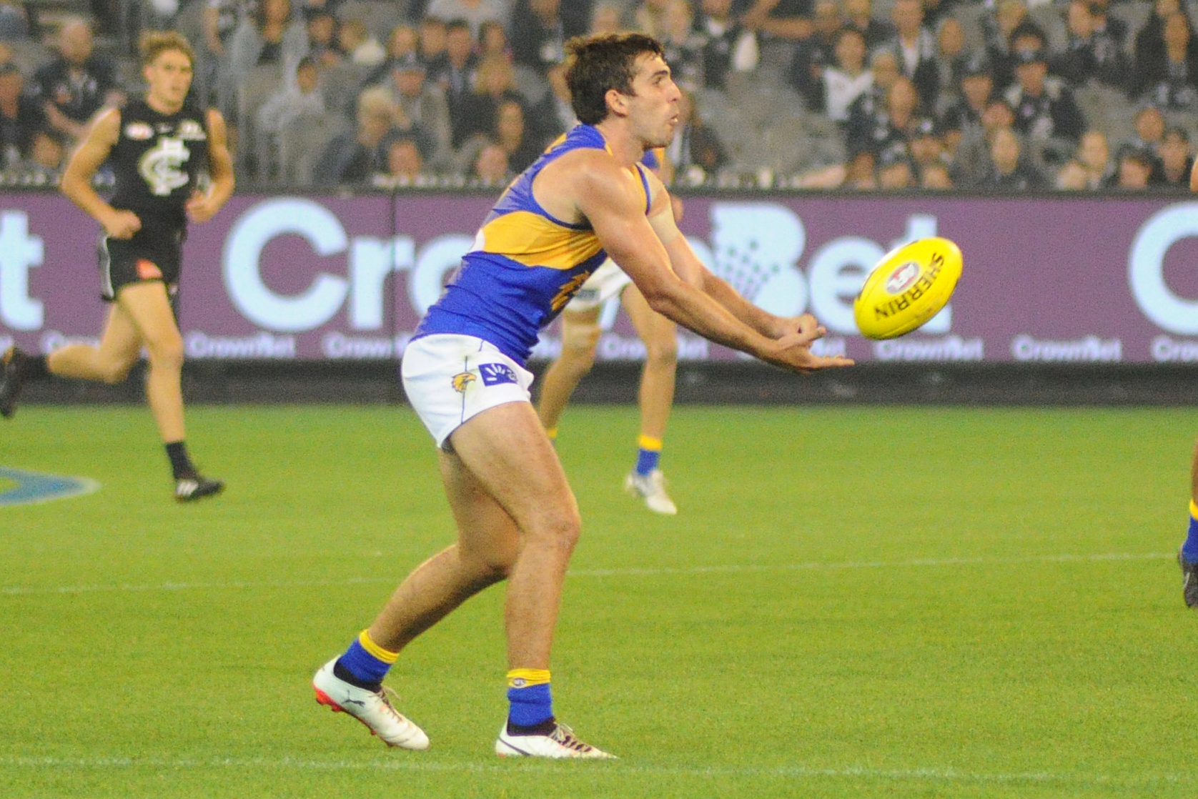 Image Result For Andrew Gaff