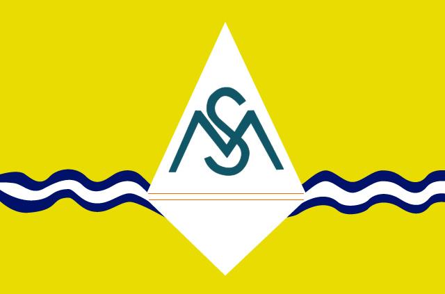 Bandeira de Santa Maria