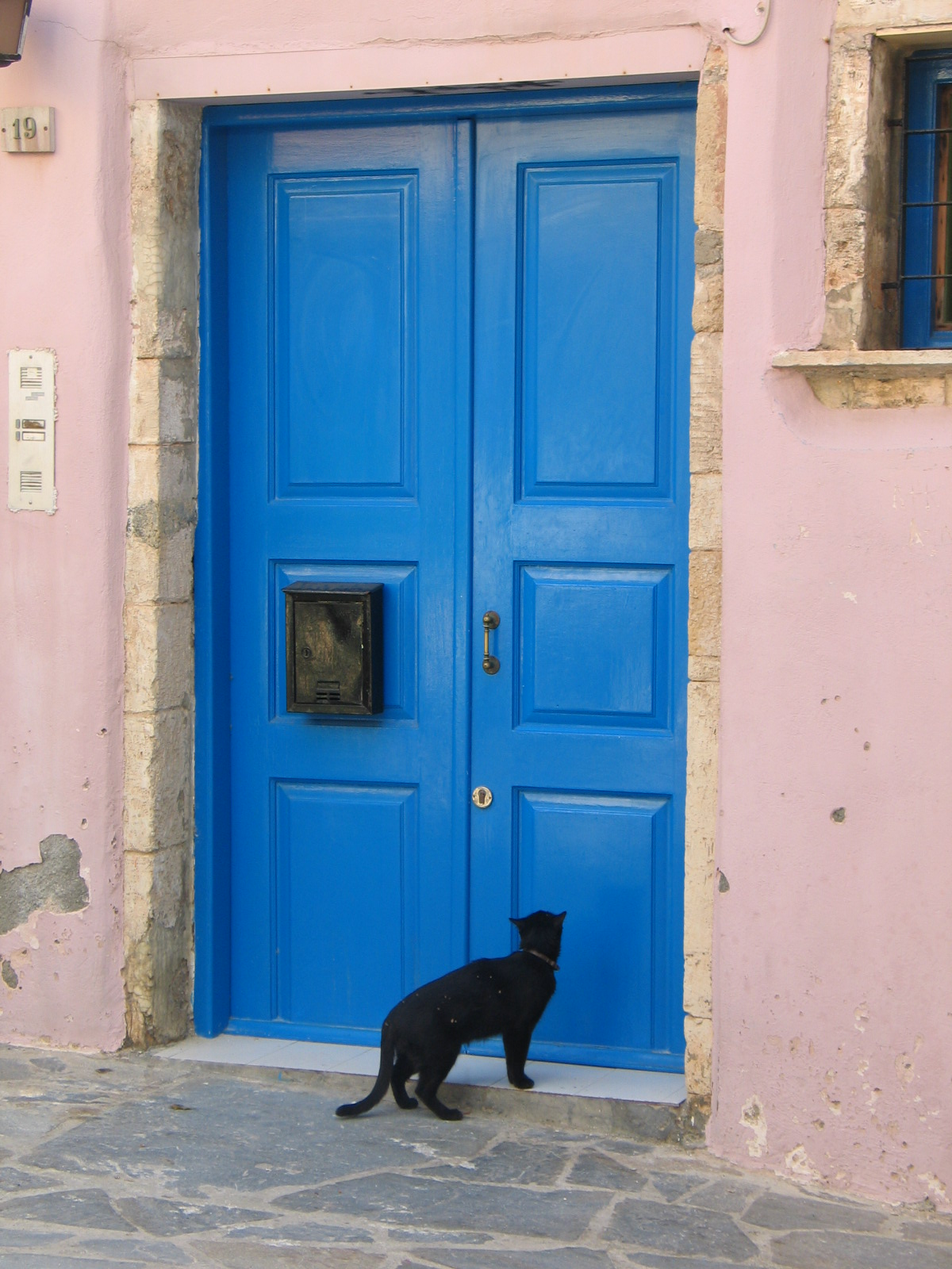 File cat at a blue wikimedia commons for Doors for front door