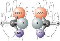 Chirality with hands and two enantiomers of a ...