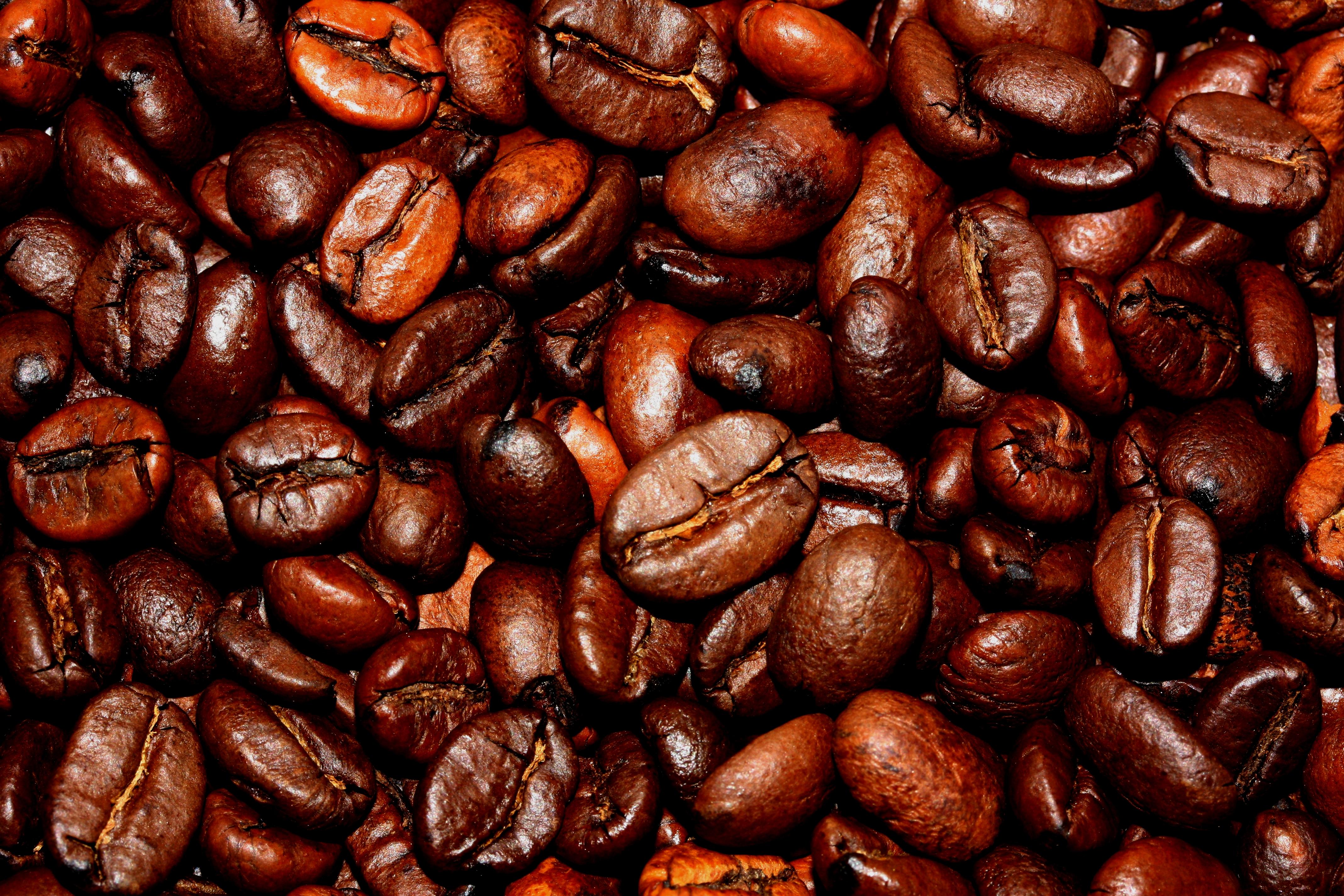 Coffee Beans (2732722806)
