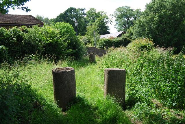Concrete posts on a green lane - geograph.org.uk - 857529.jpg
