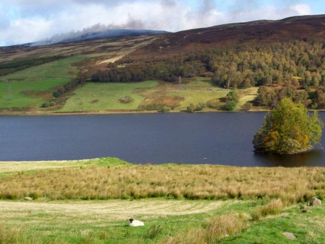 Crannog on Loch Freuchie - geograph.org.uk - 1548724