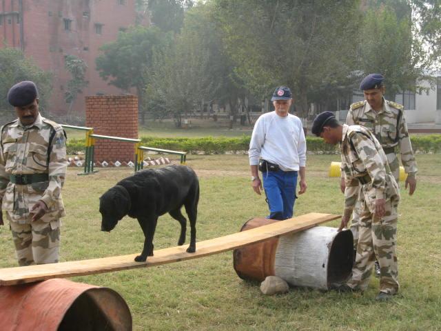 Epic Dog Training