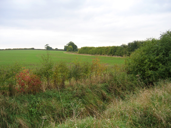 Farmland west of Great Lane, Clophill, Beds - geograph.org.uk - 64928