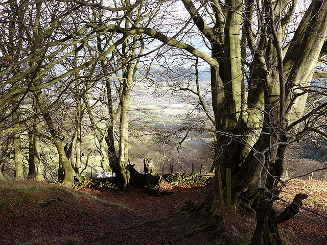 Footpath leading to the Punchbowl, Blorenge - geograph.org.uk - 1086521