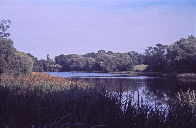 Lake at Trent Country Park, London N14 - geograph.org.uk - 710402