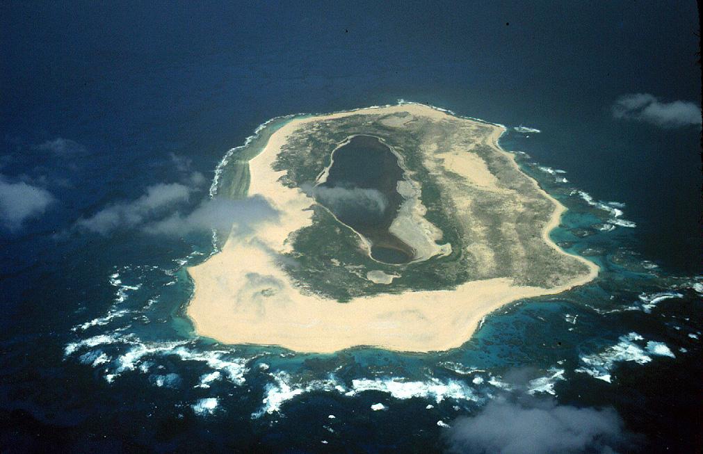 Big Island Hawaii Haie