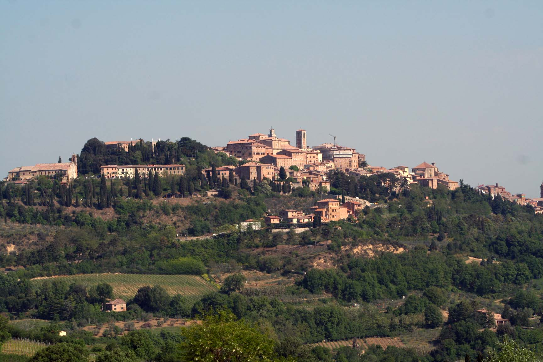 opinions on montepulciano