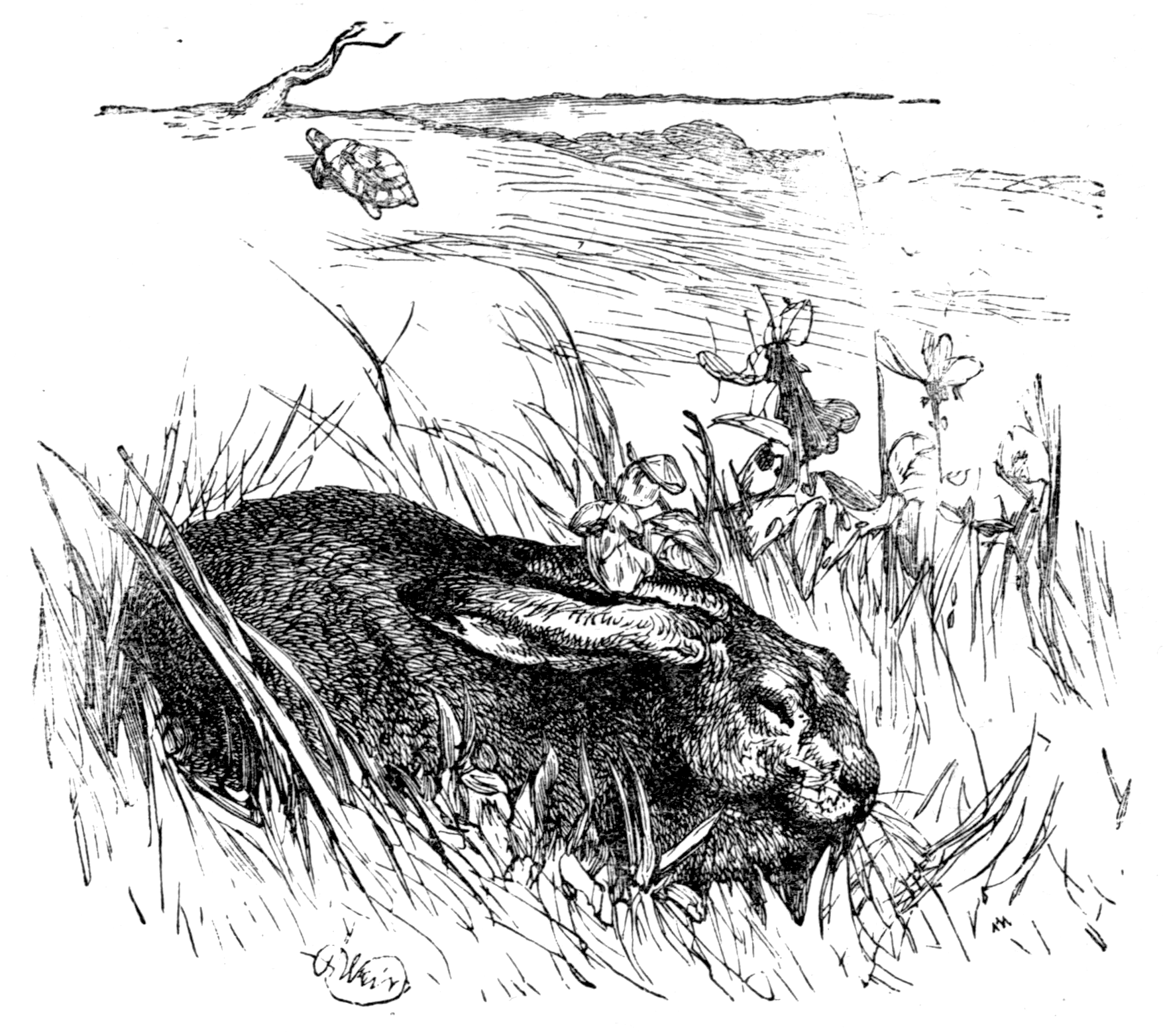 Illustration from a collection of fables