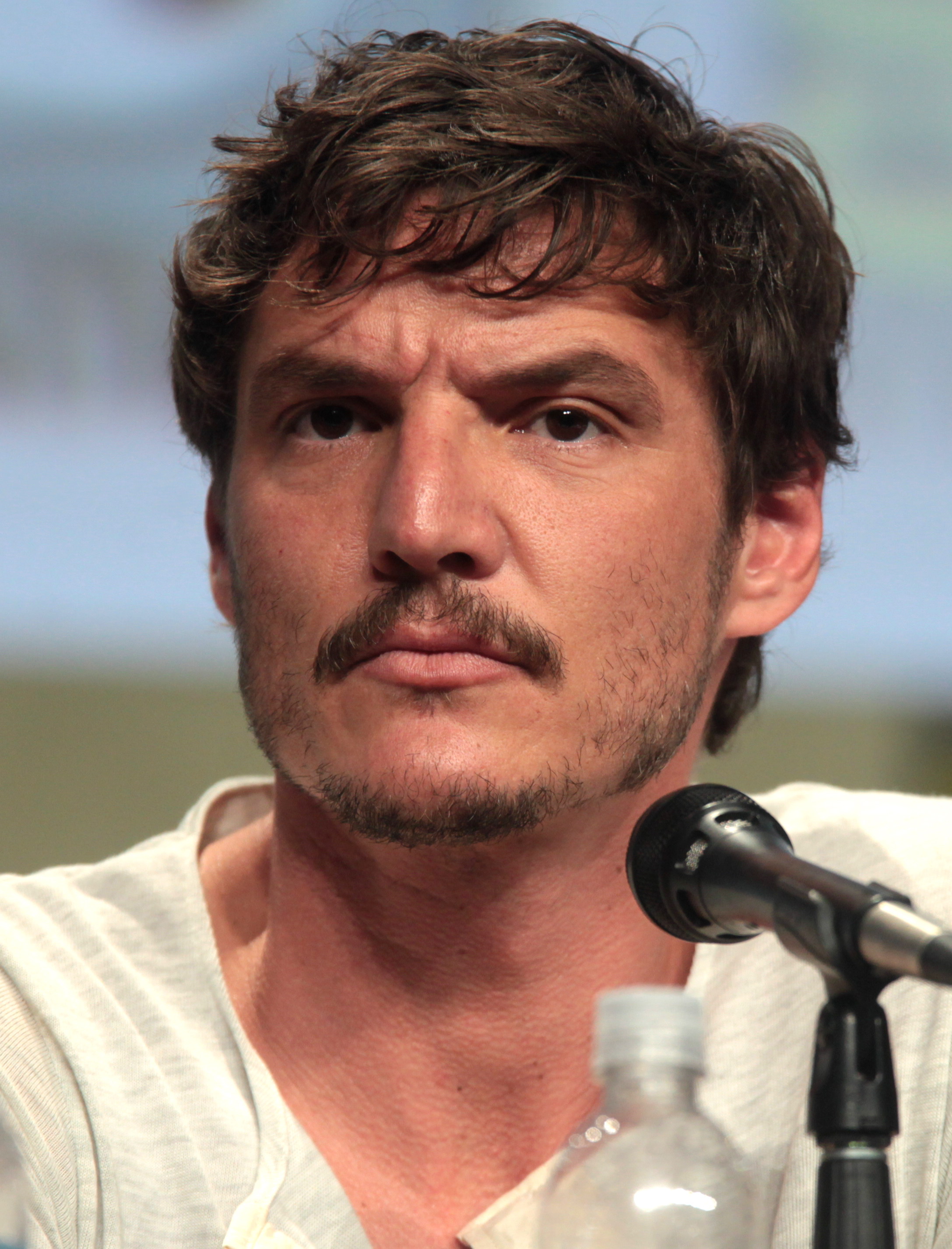 Pedro Pascal earned a  million dollar salary - leaving the net worth at 2 million in 2018