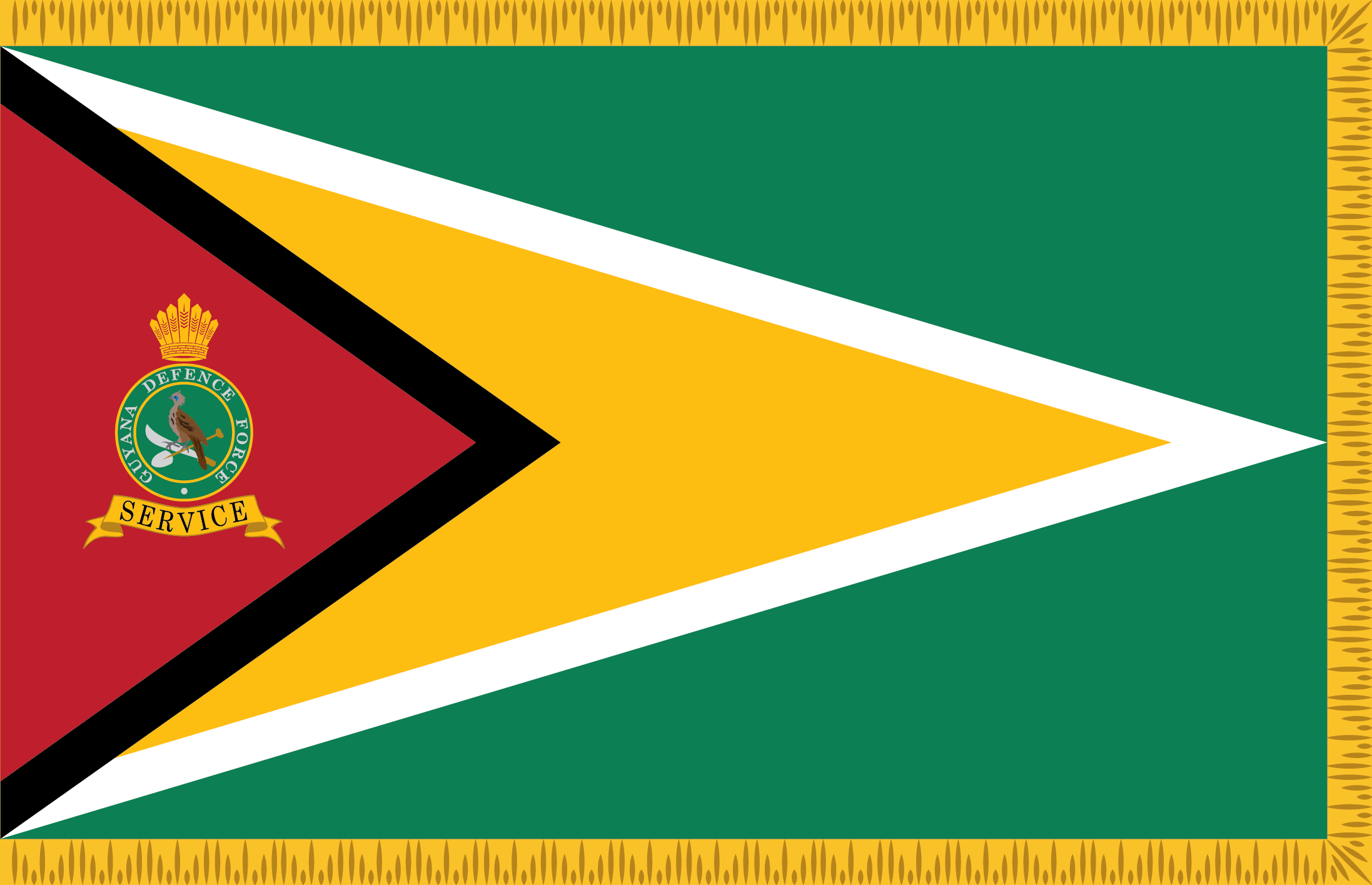 Guyana Defence Force in National Development