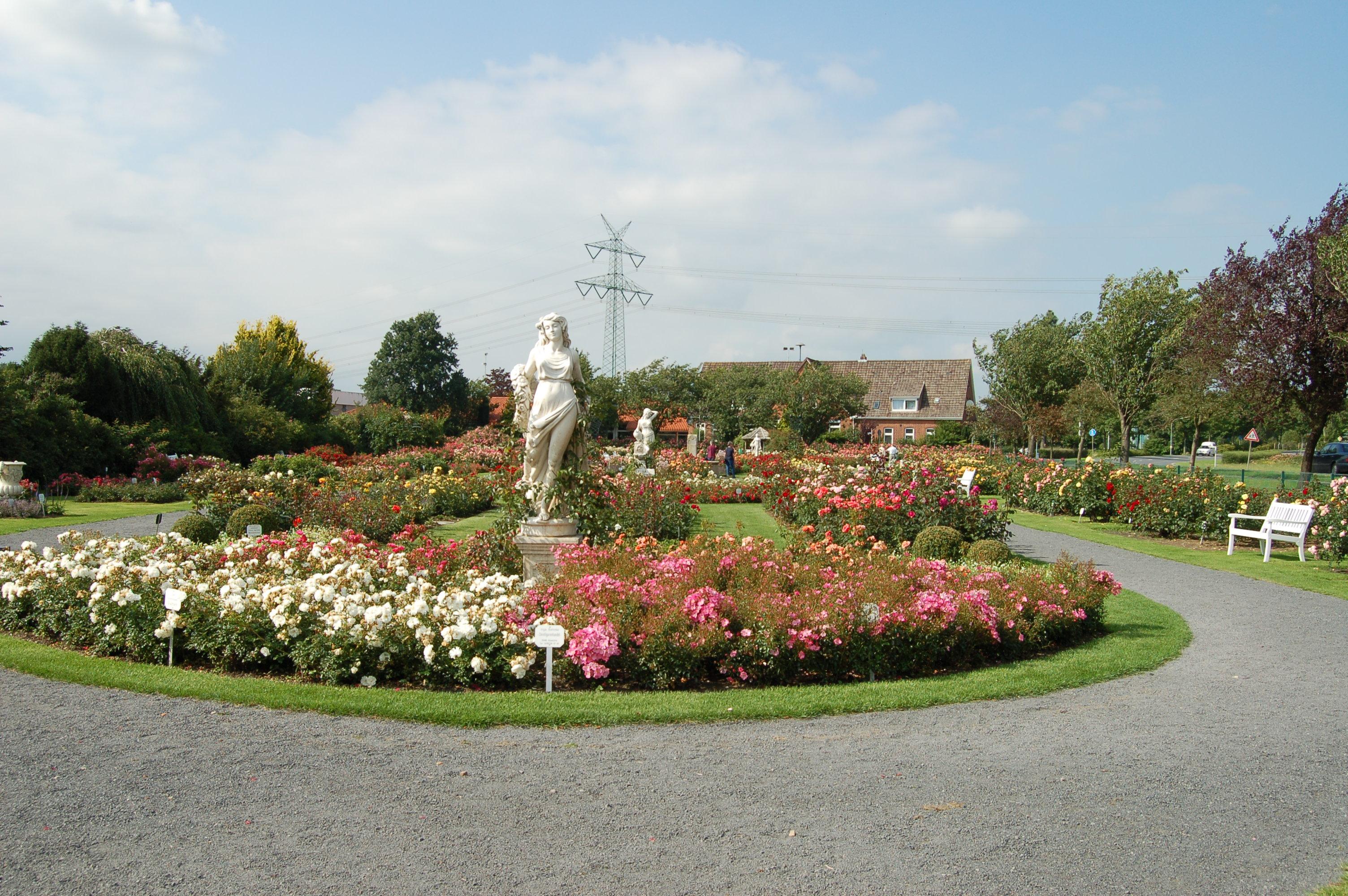file rosenpark rosen kordes jpg wikimedia commons