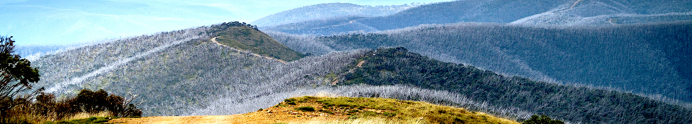 Горная часть юго-восточной Австралии.