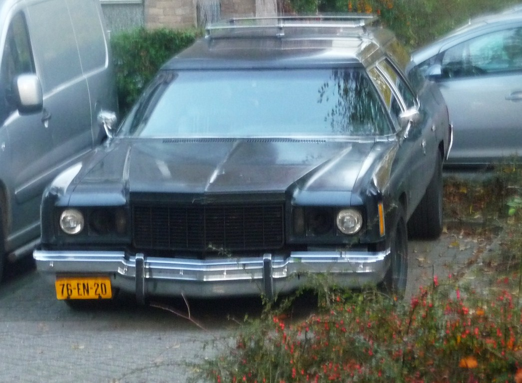 File 1975 Chevrolet Impala Station Wagon 6292290182 Jpg