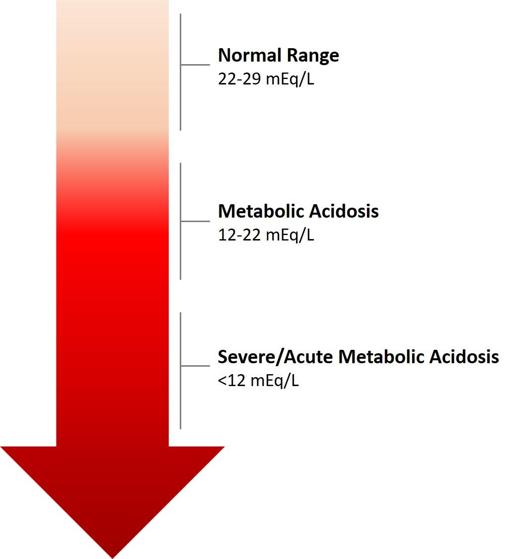 Metabolic Acidosis Wikipedia