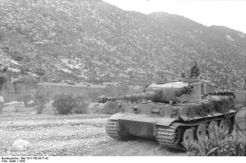 Το Tiger «142» με δίχτυα παραλλαγής στα πλαϊνά του