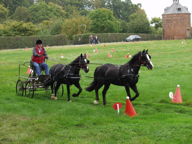 Carriage Driving in Erddig Park - geograph.org.uk - 570557