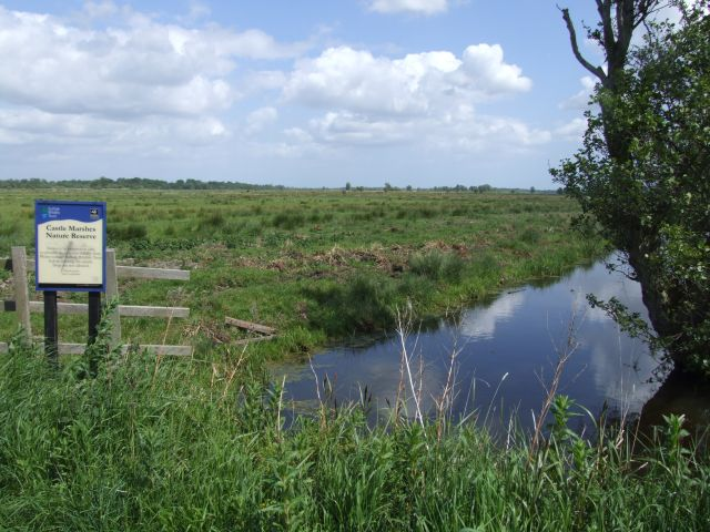 Castle marshes nature reserve