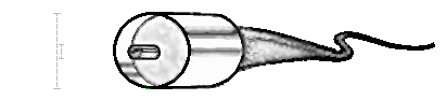 Coaxial-cable.png