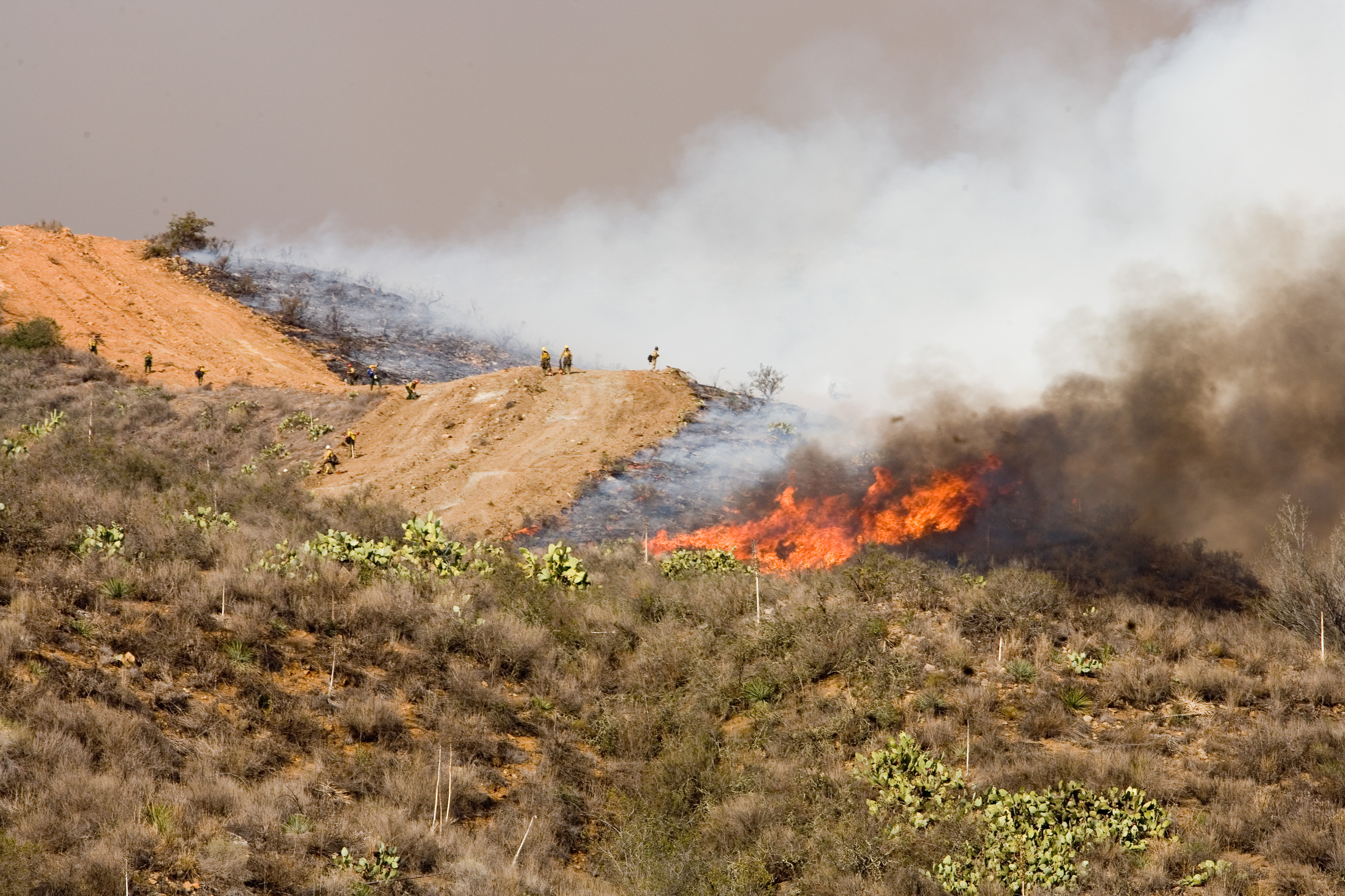 Image Result For Fires In California