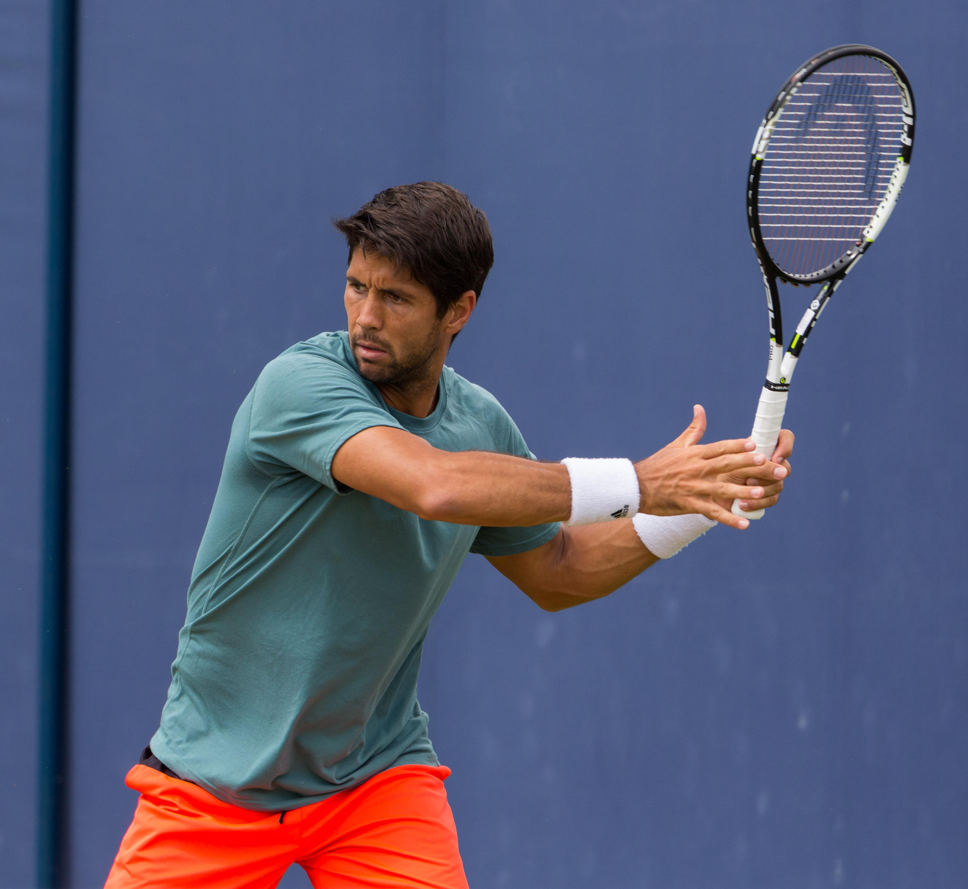 1000+ ideas about Fernando Verdasco on Pinterest | Tennis ...