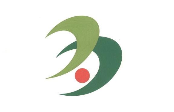 File:Flag of Taka Hyogo.JPG