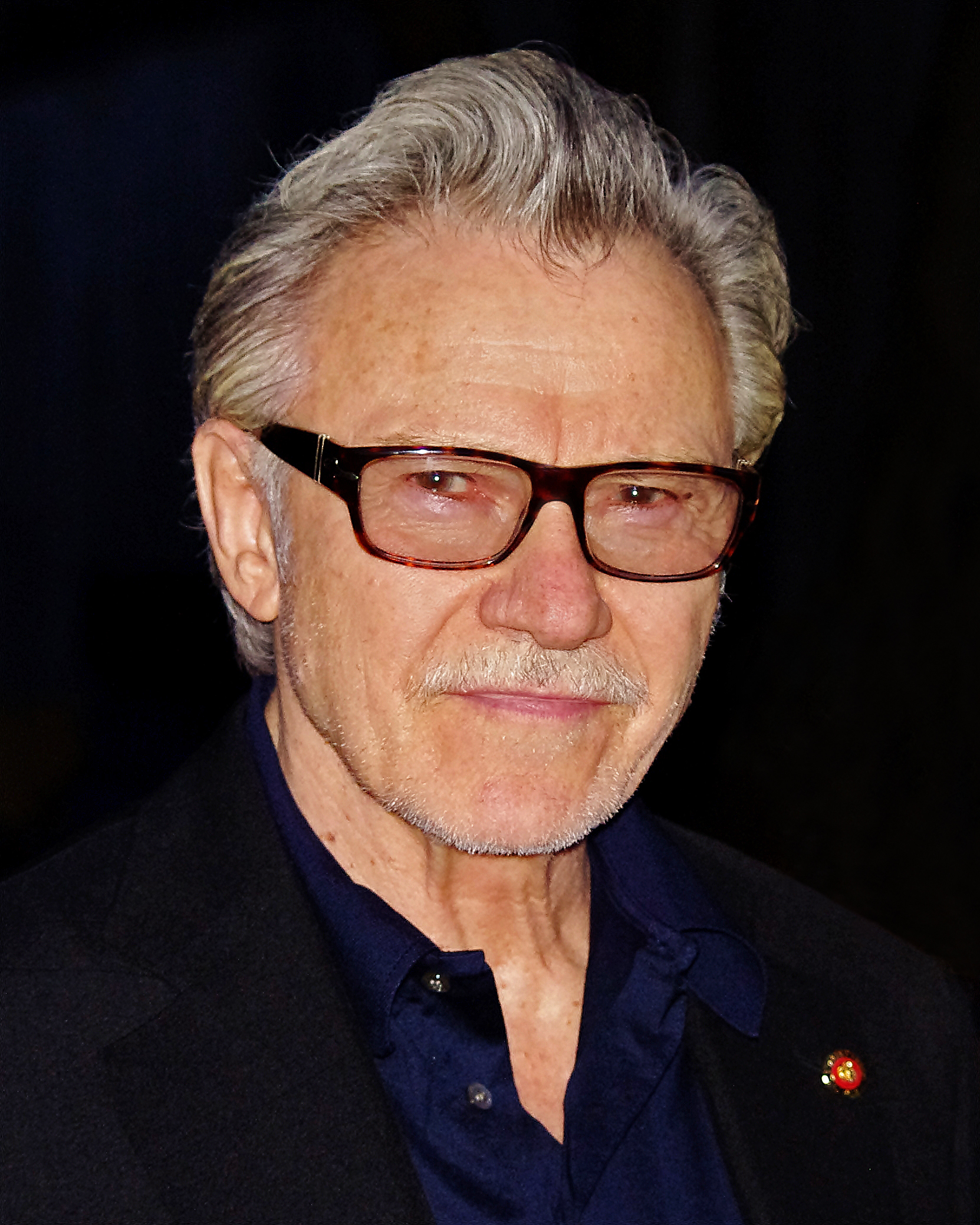 The 79-year old son of father Harry Keitel and mother Miriam Keitel Harvey Keitel in 2018 photo. Harvey Keitel earned a  million dollar salary - leaving the net worth at 45 million in 2018
