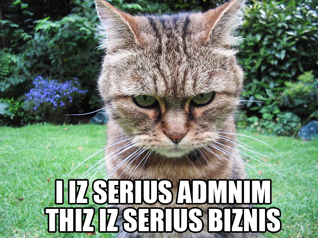 A list of who is here - Page 2 I_IZ_SERIUS_ADMNIM_THIZ_IZ_SERIUS_BIZNIS_lolcat