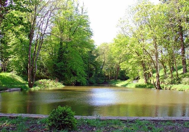 Lake at Slebech Park - geograph.org.uk - 800436
