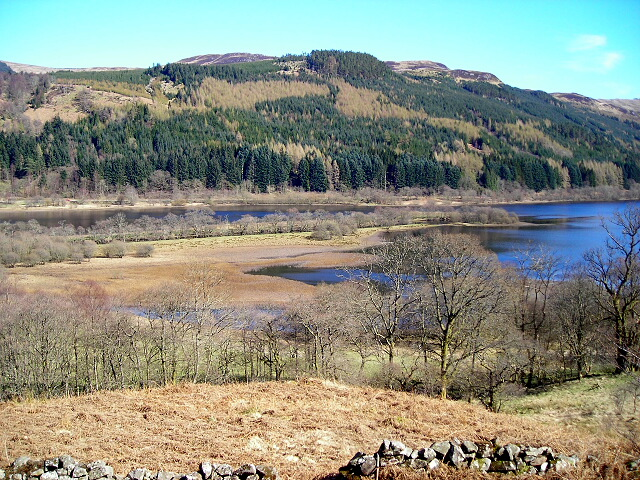 Marshy Areas at North End of Loch Lubnaig - geograph.org.uk - 394774