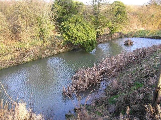 Medieval Pond in Saltford - geograph.org.uk - 664788