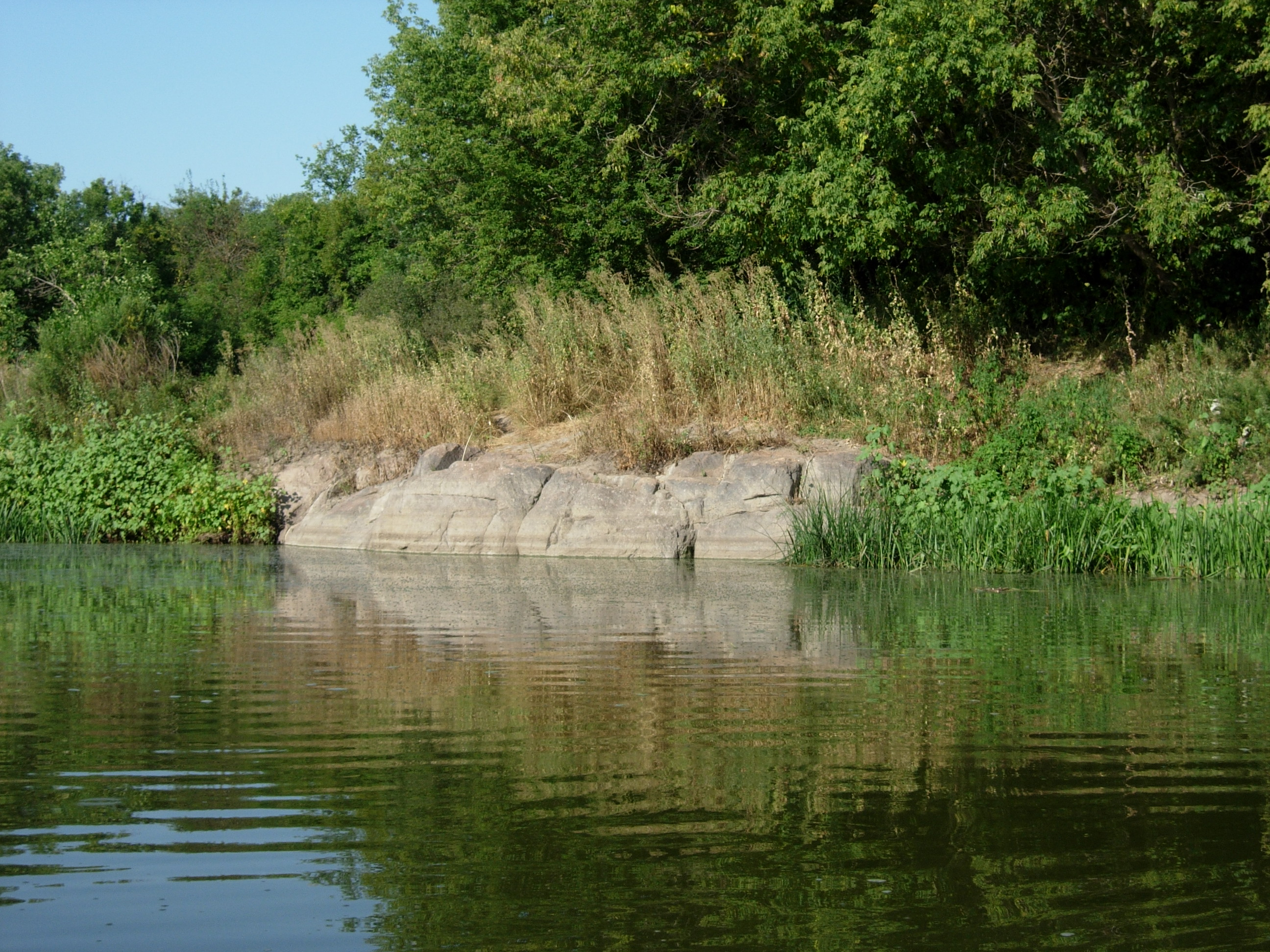 Water A Natural History