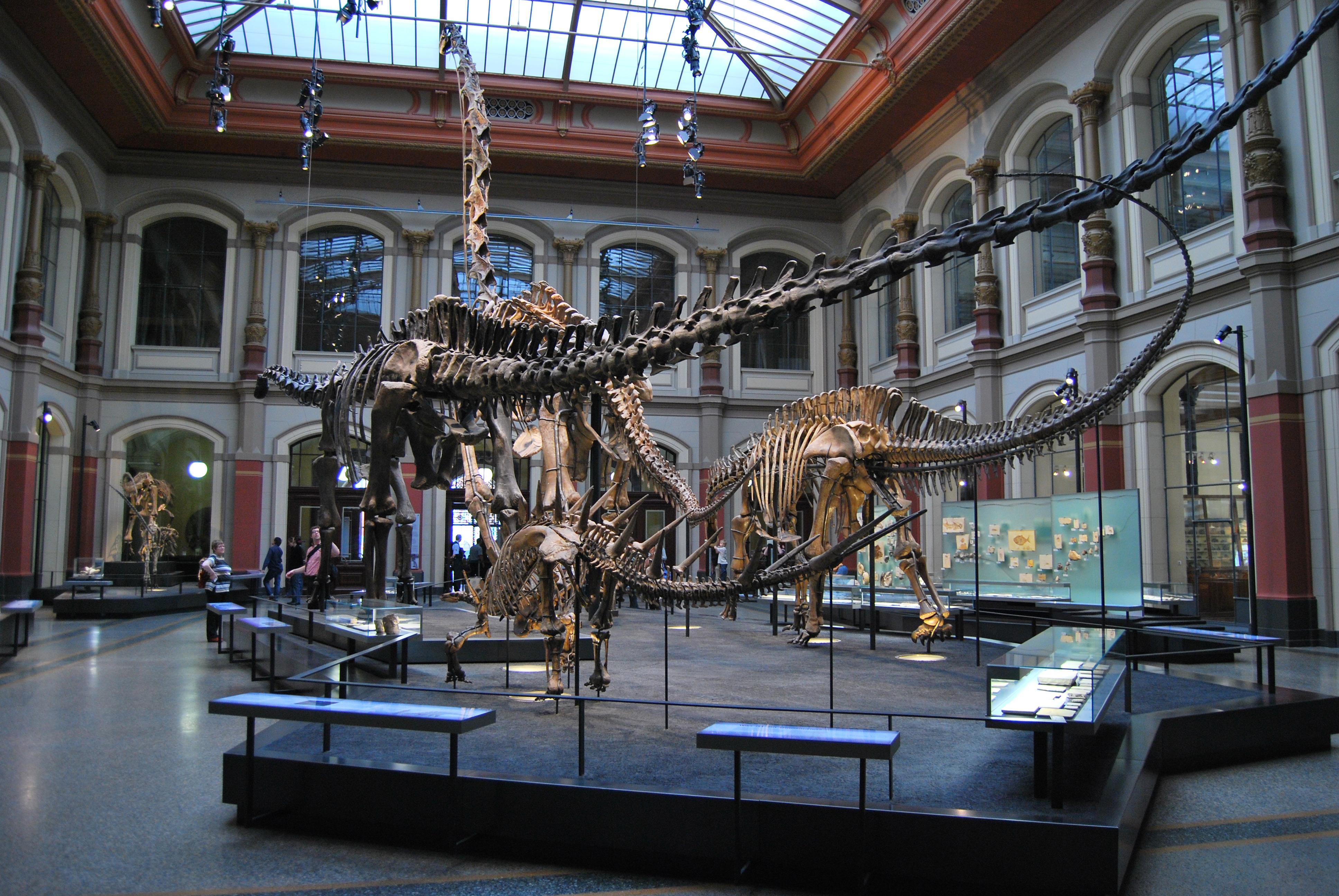 Dino Museum Berlin
