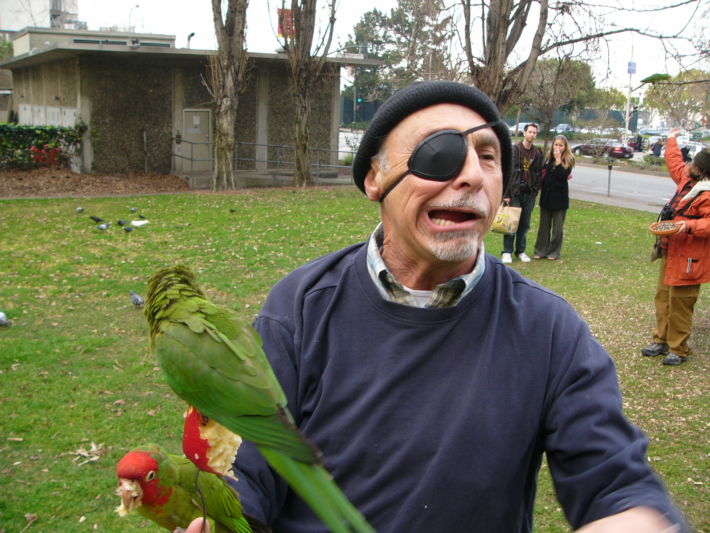 http://upload.wikimedia.org/wikipedia/commons/8/88/Pirate_costume_eyepatch.jpg