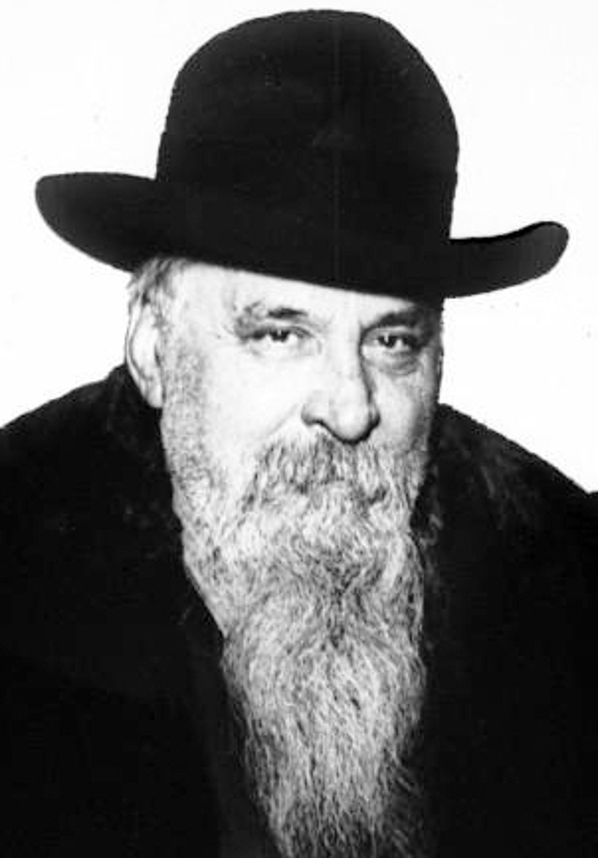Ricciotti Garibaldi Wikidata