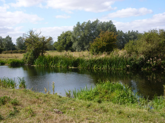 River Stour near Fen Bridge - geograph.org.uk - 1481646